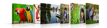 Canvas Prints from your Photos